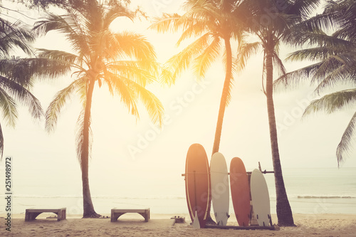 Fotografia  Surfboard and palm tree on beach background.