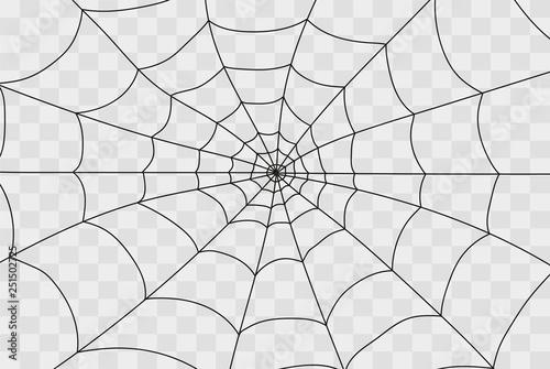 Obraz na plátně Cobweb isolated on white
