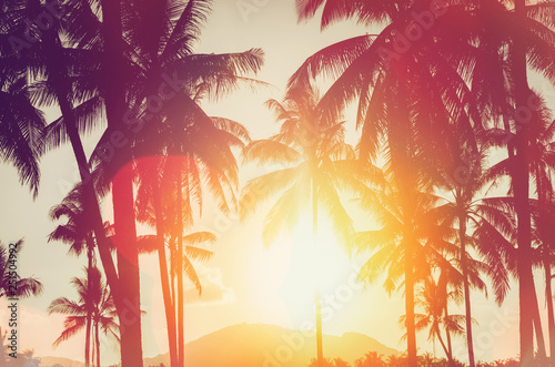 Poster Tropical beach Tropical palm tree with colorful bokeh sun light on sunset sky cloud abstract background.