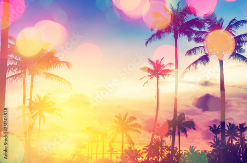 Obraz Tropical palm tree with colorful bokeh sun light on sunset sky cloud abstract background. - fototapety do salonu