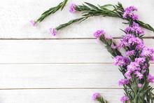 Marguerite Daisy Flower Purple Decorate On White Wooden Background