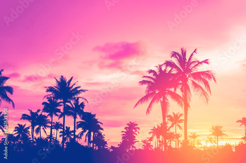 Foto op Canvas Candy roze Tropical palm tree with colorful bokeh sun light on sunset sky cloud abstract background.