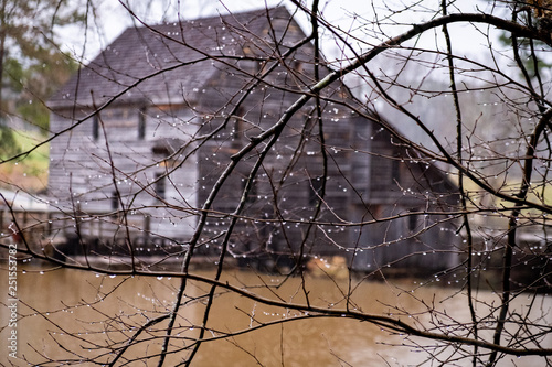 Fototapeta Focus on twigs and rain droplets with the old gristmill blurred in the background at Historic Yates Mill County Park in Raleigh, North Carolina