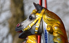 Carousel Horse Head Close Up