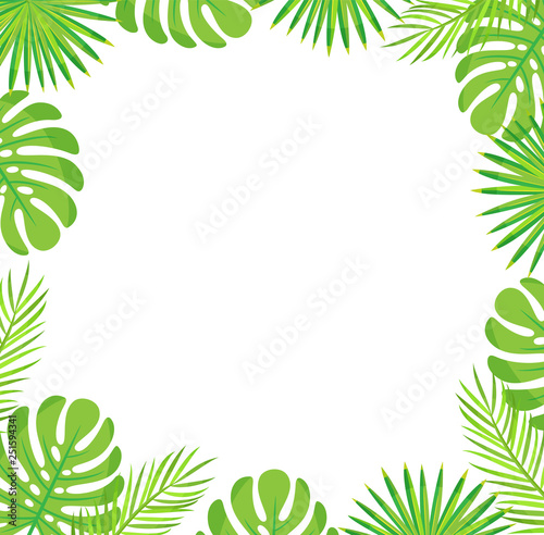 Tropical leaves border isolated green leaves of palm and monstera. Vector botanical frame of exotic plants, spare place for text, stylish botanical foliage Wall mural