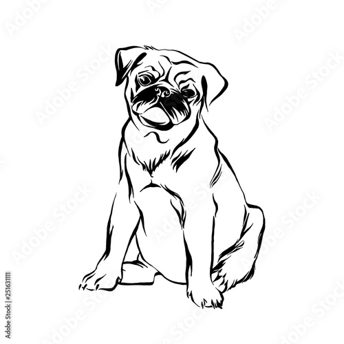 Hand Drawn Sitting Pug Puppy Dog Vector Sketch Black Isolated