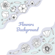 Vector Hand Drawn Flowers: Poppy, Chamomile, Tulip, Pansies, Aster, Rose, Sage.Vector Sketching Illustration. Black White Flowers Isolated.