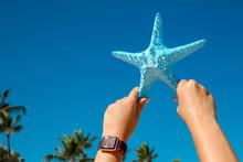 Hand Holding Blue Starfish Palmtree Background