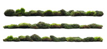 Set Green Moss With Grass Isolated On White Background And Texture, Clipping Path