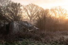 Abandoned Shed In The Woods At Sunrise