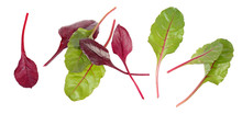 Fresh Chard Green And Red Leaves Isolated On White Background