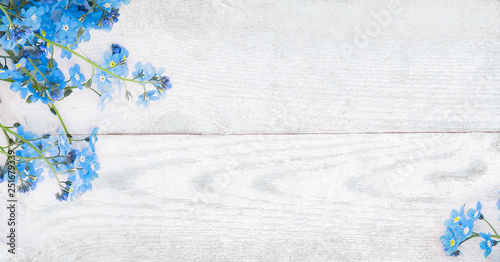 Plakaty niebieskie  rustic-spring-wooden-background-with-forget-me-nots-flowers