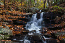 Hiking Along Amicalola Falls Georgia