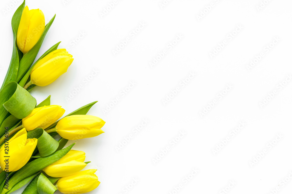 Fototapety, obrazy: Spring composition. Delicate yellow tulips on white background top view space for text border