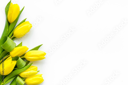 Spoed Foto op Canvas Tulp Spring composition. Delicate yellow tulips on white background top view space for text border