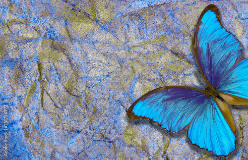 Foto auf Leinwand Schmetterlinge im Grunge morpho butterfly on bright shining background. gold blue texture background. golden crumpled paper.