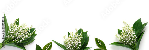 Keuken foto achterwand Bloemen Banner, a border of lilies of the valley, isolated on a white background, top view. The concept of summer, spring, Mother's Day, March 8.