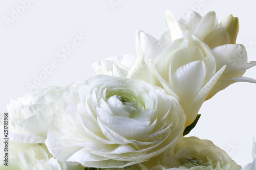 Fotografía  details of wedding bouquet of freesia and buttercups isolated on white