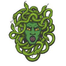 Medusa Head With Snakes Greek ...