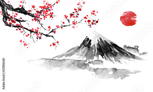 Japan traditional sumi-e painting Canvas Print