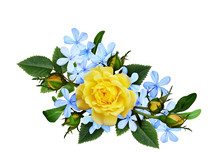 Yellow Roses And Blue Small Flowers In A Floral Arrangement