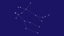 Gemeni Constellation Vector Design