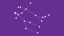 Gemeni Constellation Vector De...