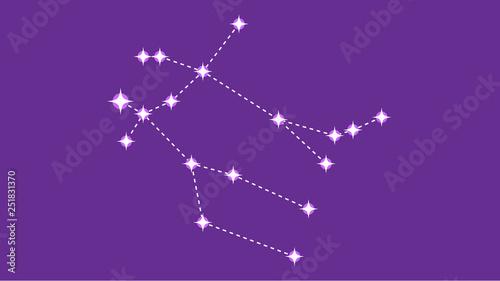Платно Gemeni constellation vector design