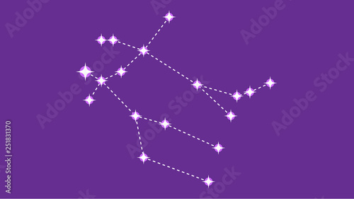 Gemeni constellation vector design Canvas Print