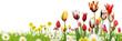 Blumen 1026