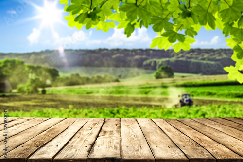 Fototapeta desk of free space and farm background.  obraz