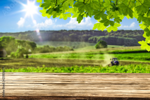 Fototapeta desk of free space and farm background.  obraz