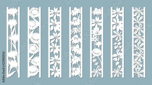 Echinacea, chamomile, schefler, noble hepatica, zephyrantes, stokesia Canvas Print