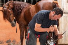 Farrier At Work Trimming The Horses Hoof .
