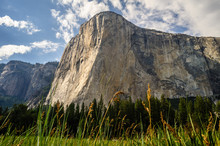 El Capitan In Yosemite Nationa...