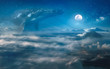 canvas print picture - Nocturne surreal dream with clouds, big whale hovering in the space, night landscape under full moon on background