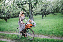 Girl Blonde In A Dress And Glasses Rides A Bicycle With A Basket With A Dog And Flowers