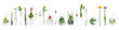 canvas print picture - Laboratory glassware with plants on white background