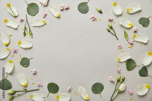Fotografía  top view of round floral frame made of petals and leaves with copy space isolate
