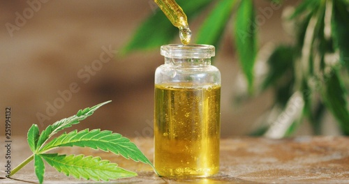 Fototapeta Macro close up of droplet dosing a biological and ecological hemp plant herbal pharmaceutical cbd oil from a jar. obraz
