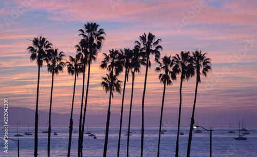 Fotografie, Tablou  Santa Barbara California Sunset