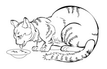 Sketch Of My Always Hungry Eating Cat. Black And White Page For Coloring Book. Hand-drawn Vector Image On Computer By Graphic Tablet. Pattern For Modern Print, Embroidery, Advertising For Kitten Food.