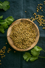 Raw, Unprocessed Organic Coriander Or Cilantro Seeds