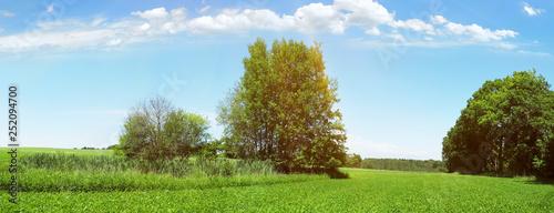 Leinwanddruck Bild - ExQuisine : Biotop mit See und Bäumen - Landschaft