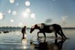 Horsemanship im Gegenlicht im See