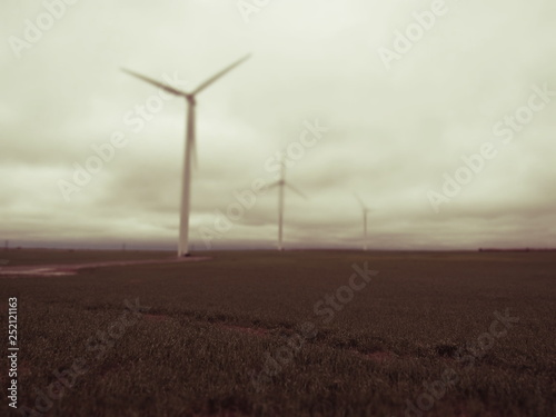 Fotografie, Obraz  Wind turbines in a field