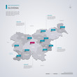 Slovenia vector map with infographic elements, pointer marks.