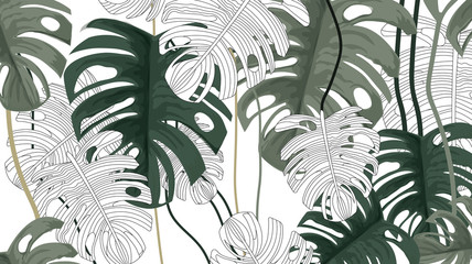FototapetaTropical plants and white background pattern-vector