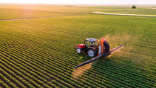 Serbia, Vojvodina, Aerial View Of A Tractor Spraying Soybean Crops