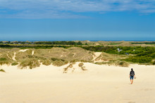 Denmark, Jutland, Woman Walking At Rabjerg Mile Shifting Dune